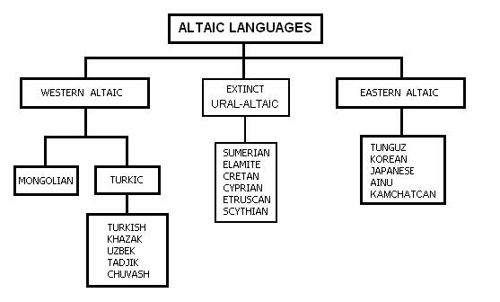 Diversification of languages ccuart Image collections